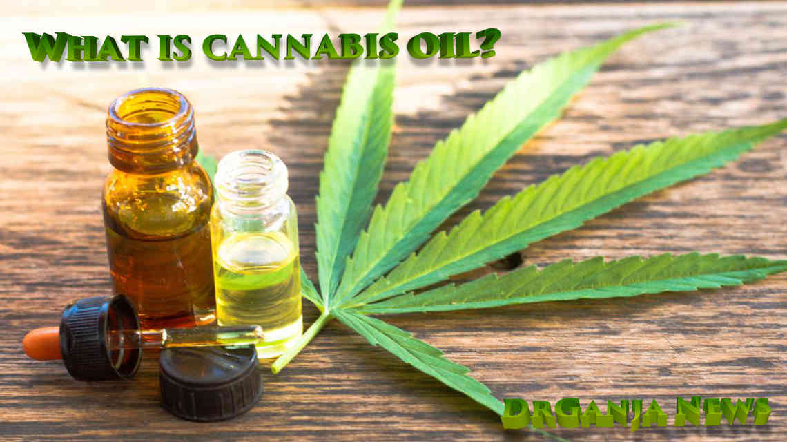 What is cannabis oil? DrGanja News