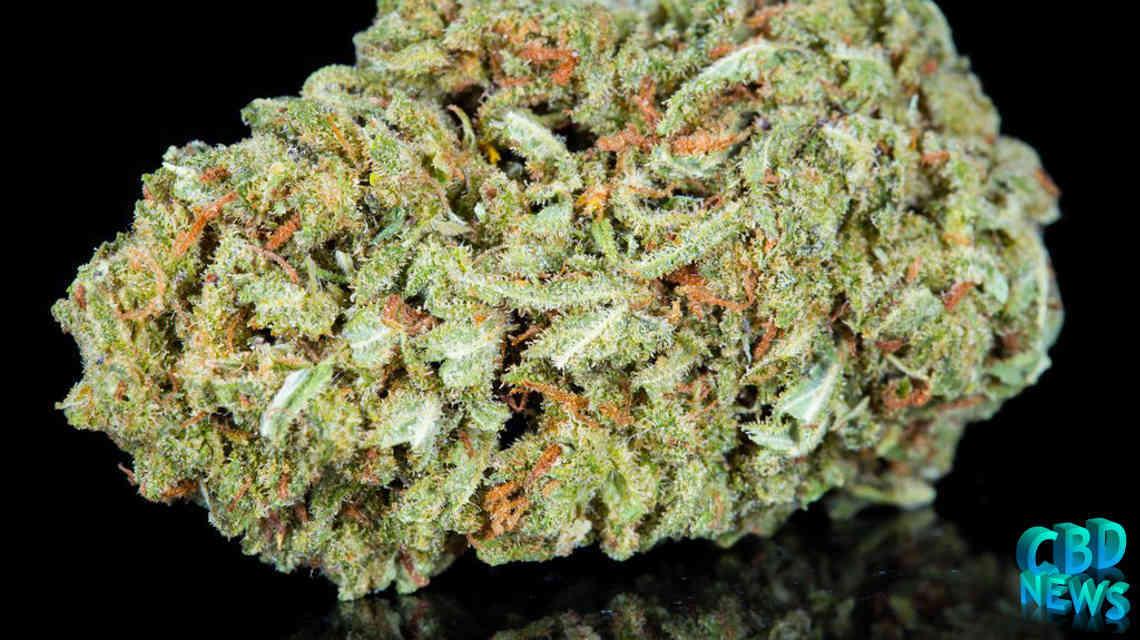 CBD Hemp Flower CBD Cannabis News