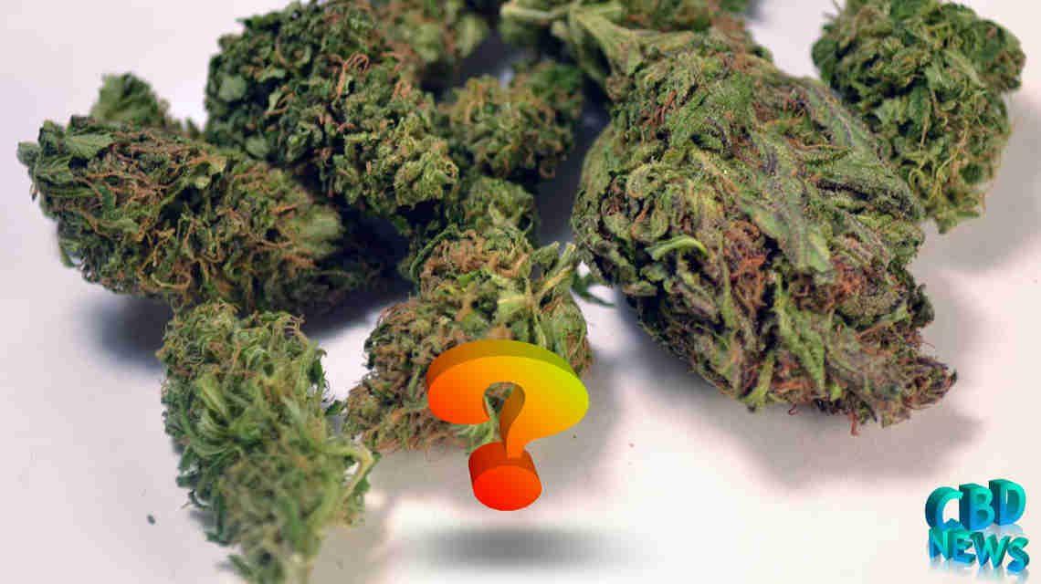 CBD Hemp Flower FAQ