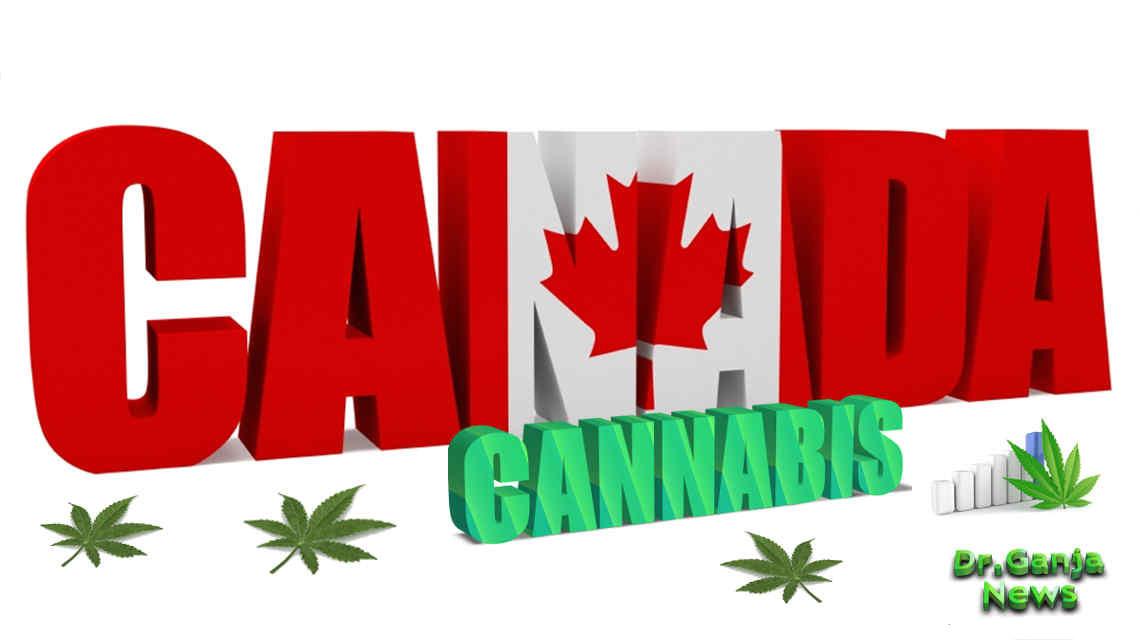Aurora Canada Cannabis CBD Marijuana Market - DrGanja News