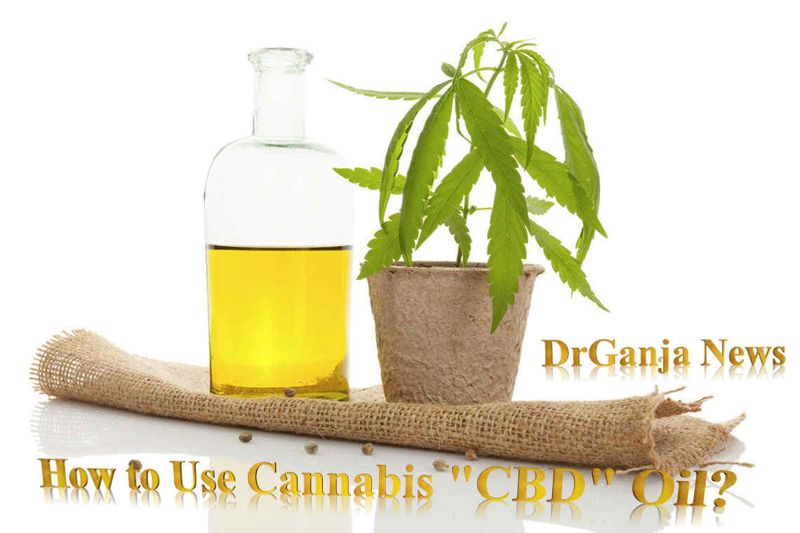 "How to Use Cannabis ""CBD"" Oil? DrGanja News"